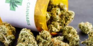 Americans Think Pot Is Healthy, But Scientists Still Have Questions