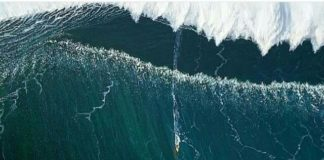 Surfer's Monster, 80-Foot Wave Came from a Hidden, Underwater Canyon