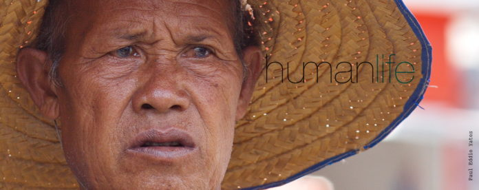 humanmemory