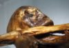 Ötzi the Iceman's Tattoos May Have Been a Primitive Form of Acupuncture
