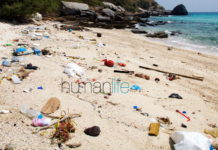 Pattaya unprepared for plastic-bag ban