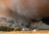 Here's How Smoke from California Wildfires Affects the Human Body