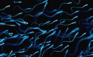 Smoking Marijuana Linked to Better Sperm Counts in Surprising Study