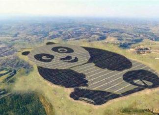 China has built a panda-shaped solar power plant
