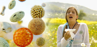 Myths and Truths about Hay Fever