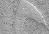 'Star Trek' Logo Spotted on Mars