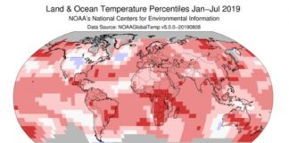 July Was the Hottest Month Ever Recorded on Earth