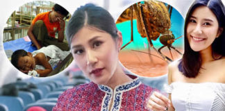 Dengue and Malaria are a Serious Danger to HUMANS in Thailand