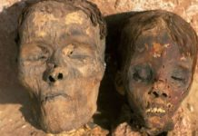 4,000-Year-Old Mummies Showed Early Signs of Heart Disease